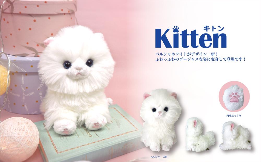 kitten_top_mv