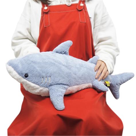 サメをひざに乗せることはなかなかできませんね!